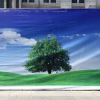 missing-landscape-vignette