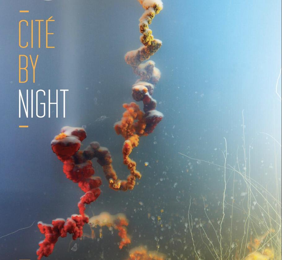 Cité by night, Screening, Cité des Arts Saint-Denis, La Réunion