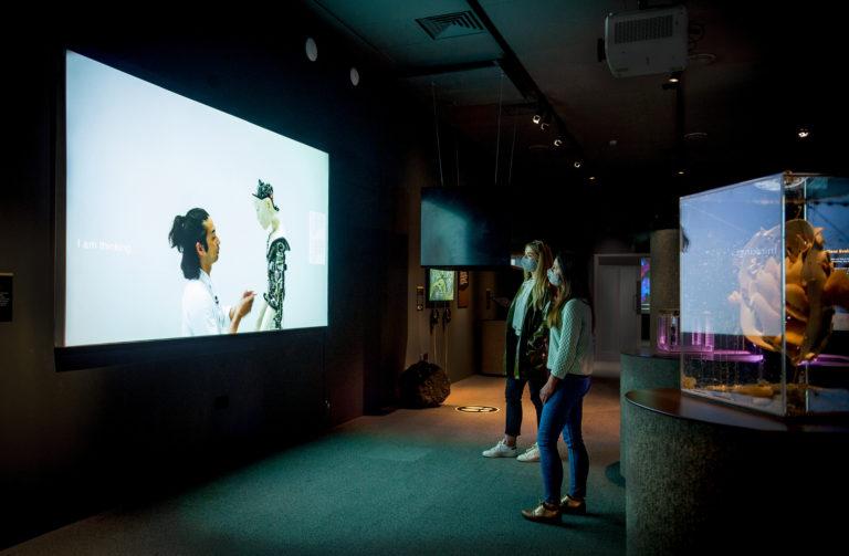 AI: More than Human, World Museum, Liverpool